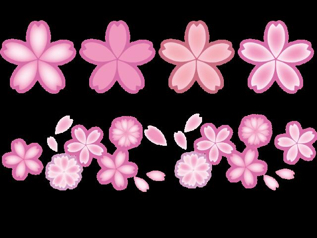 桜の花アイコンセ…