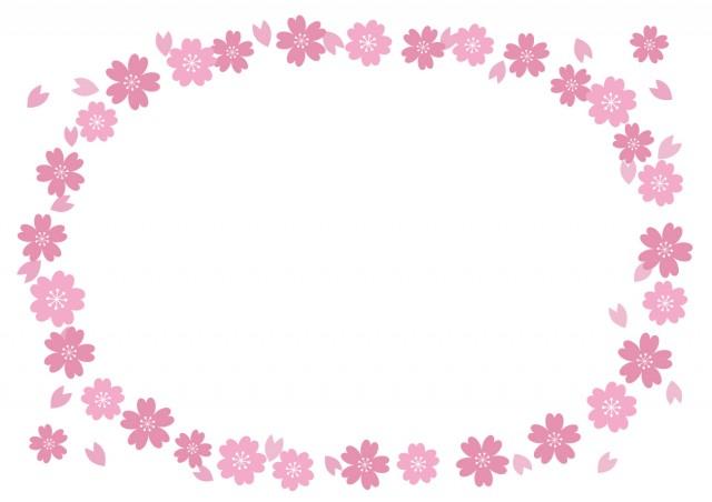 桜のフレーム(楕…