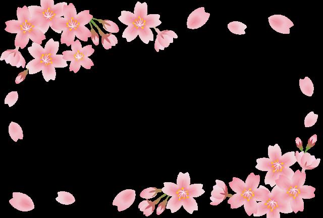 桜の花フレーム【…