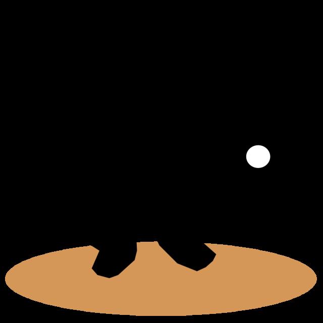 キャッチャー5