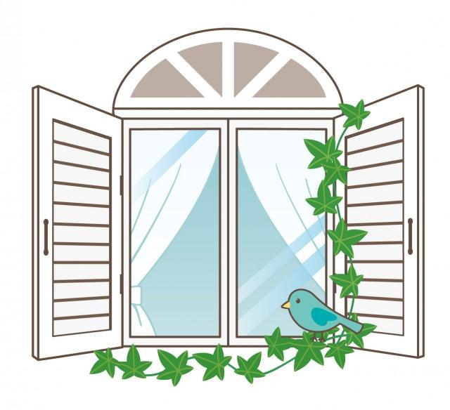 白い窓青い鳥