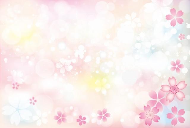 桜の花の背景素材