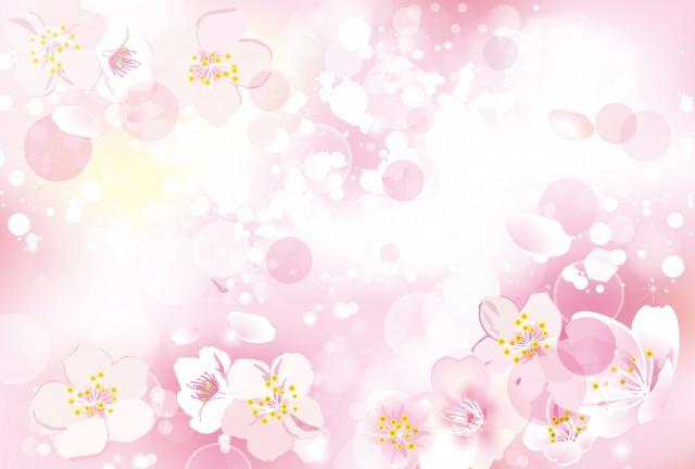 桜の背景 ピンク