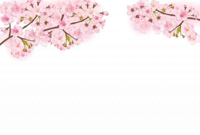 桜の枝フレーム(…