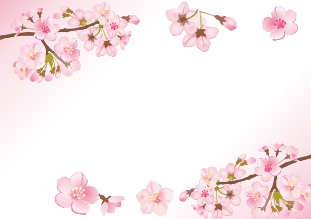 桜の花を使った素…