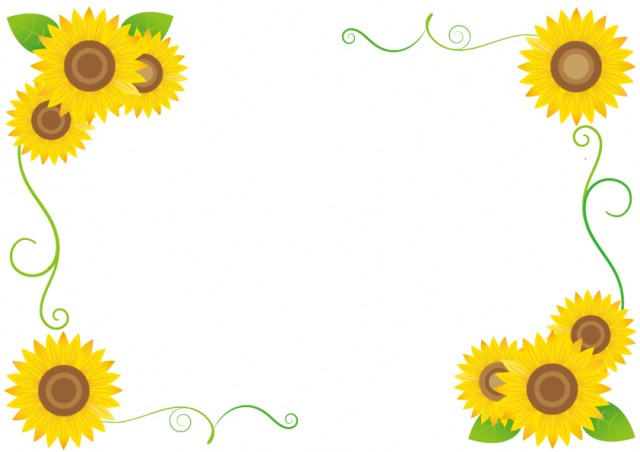 ひまわりの花フレ…