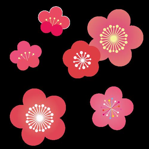 年賀状 梅の花イ…