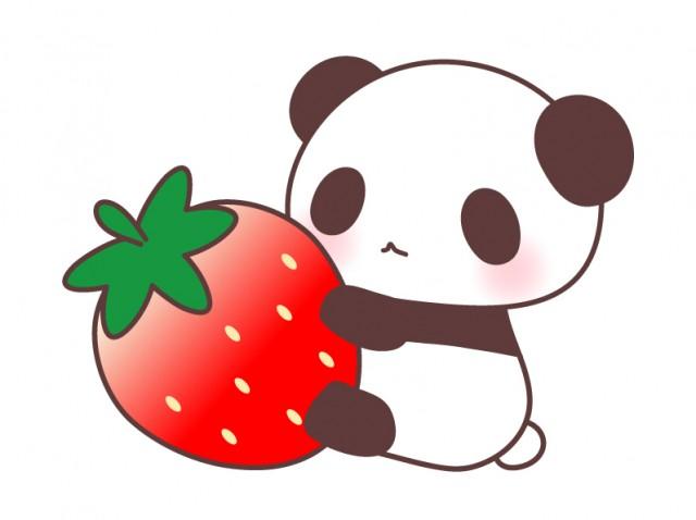 苺とパンダのイラスト素材
