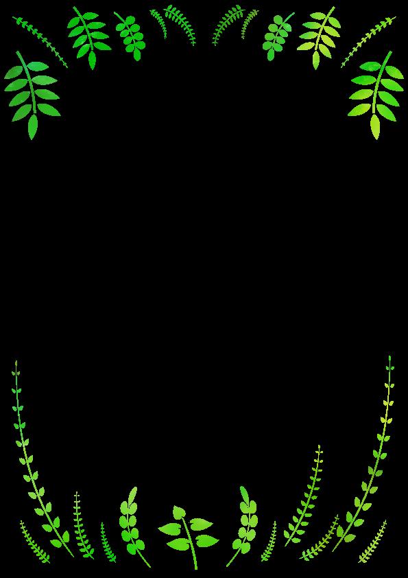 野草のフレーム