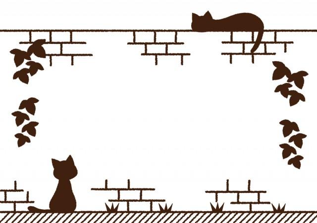 レンガ塀の猫のフ…