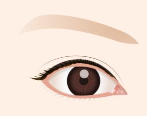 フリーで加工可能な目のイラスト イラスト系まとめ 無料イラスト