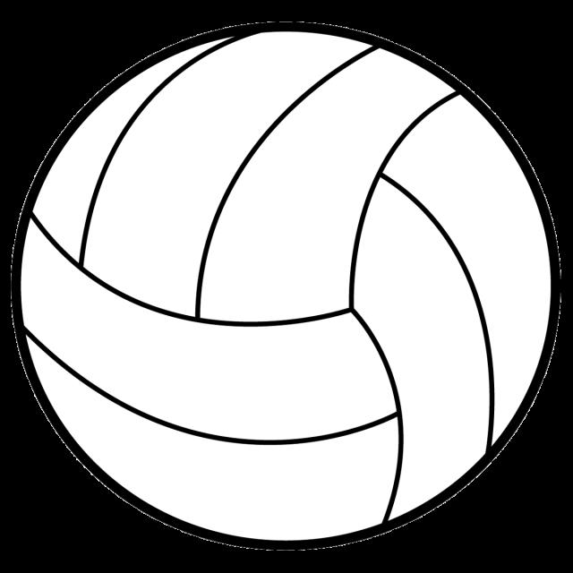 スポーツ ボール…