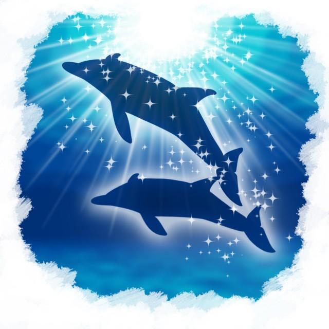 夏のイメージ 南の海 イルカ 無料イラスト素材素材ラボ