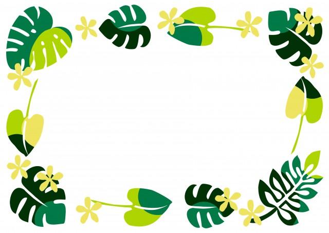 南国リーフのグリーンフレーム 無料イラスト素材 素材ラボ