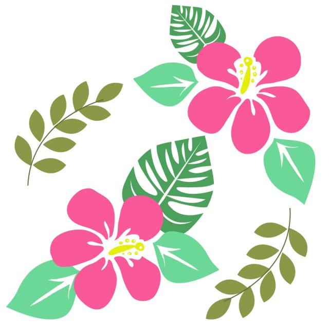 ハイビスカス ハワイアン かわいい 亀 透過 絵   www.pikuchane.com