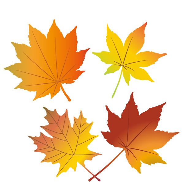紅葉の葉っぱイラスト 無料イラスト素材素材ラボ