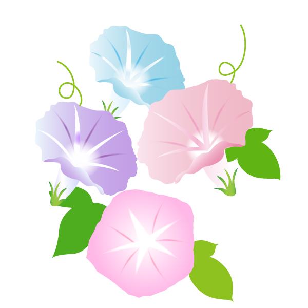あさがおの花イラストカット 無料イラスト素材 素材ラボ