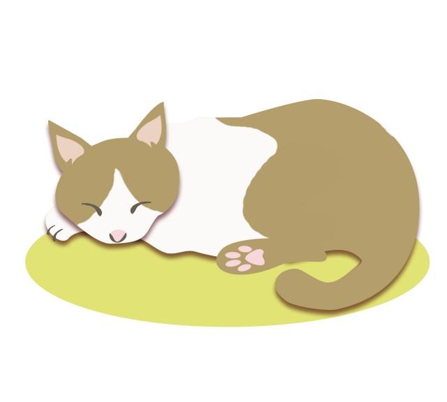音楽 寝る 猫 が