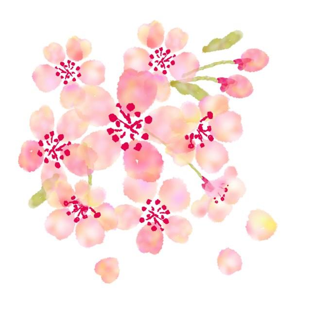 花いっぱいの桜 無料イラスト素材素材ラボ