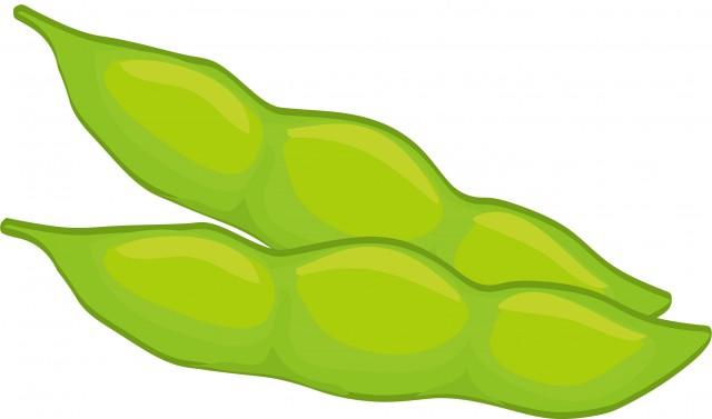 枝豆 かわいい無料イラスト使える無料雛形テンプレート最新順素材ラボ
