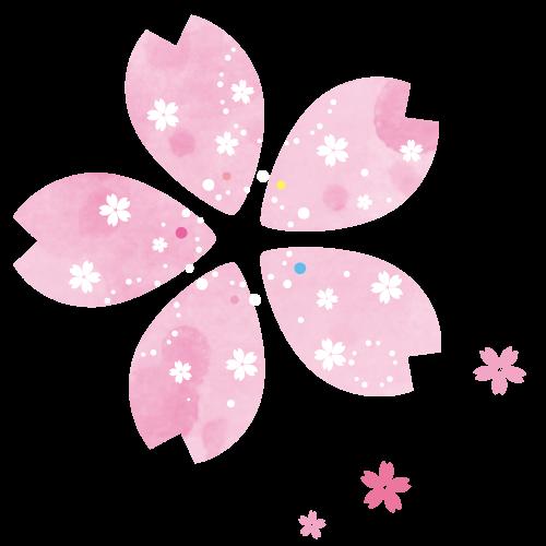 桜の花びらイラスト【透過PNG、JPG】