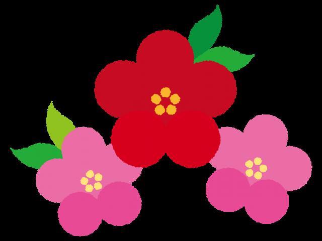 年賀状素材 お正月のアイテム 梅の花 無料イラスト素材素材ラボ