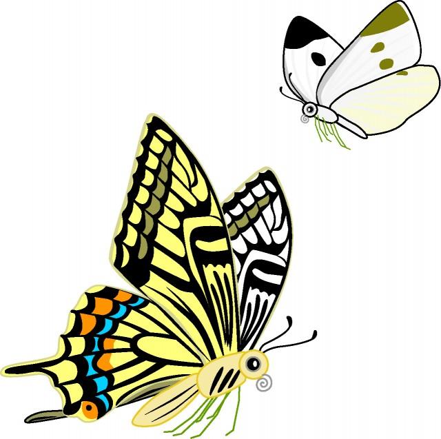モンシロチョウとアゲハチョウ 無料イラスト素材素材ラボ