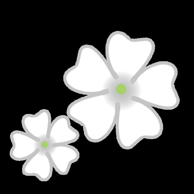 白色のカスミソウのイラスト 無料イラスト素材素材ラボ