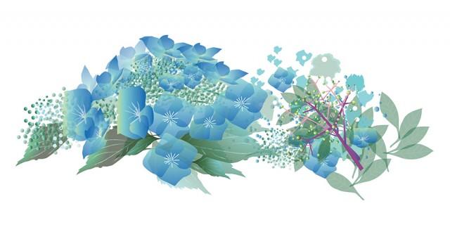 アジサイの花のイラスト 無料イラスト素材素材ラボ