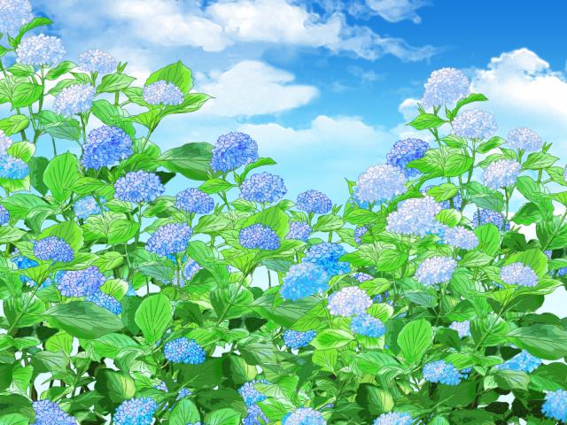 青い紫陽花の背景 無料イラスト素材素材ラボ