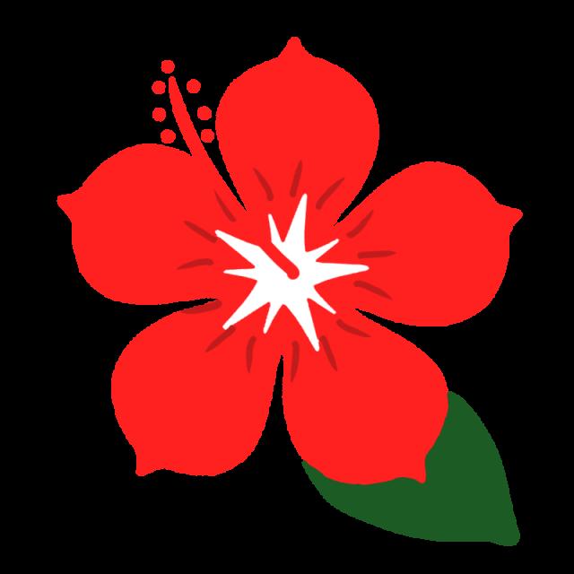 赤いハイビスカスのイラスト 無料イラスト素材素材ラボ