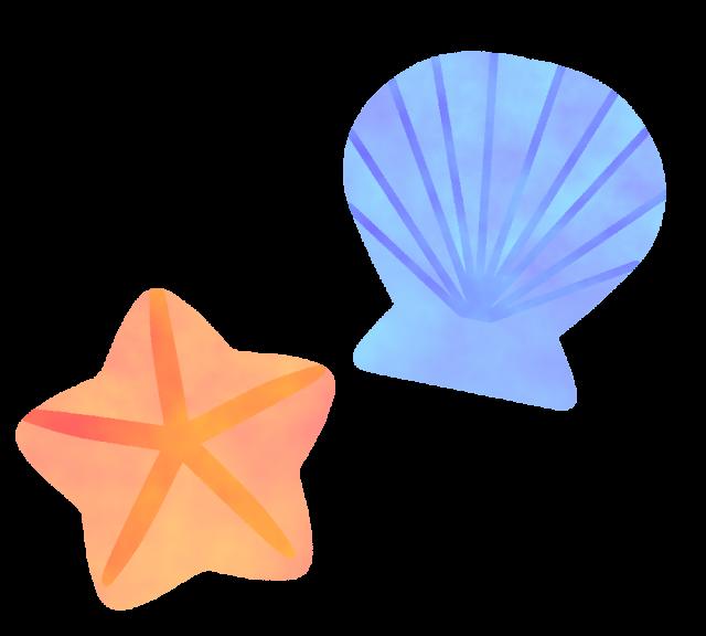 貝とヒトデのイラスト 無料イラスト素材素材ラボ