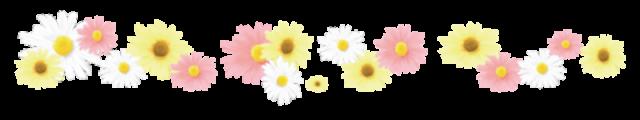 お花ライン(白桃…