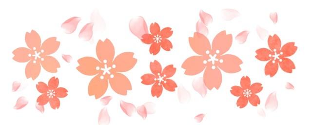 桜と花びらのラインのイラスト 無料イラスト素材素材ラボ