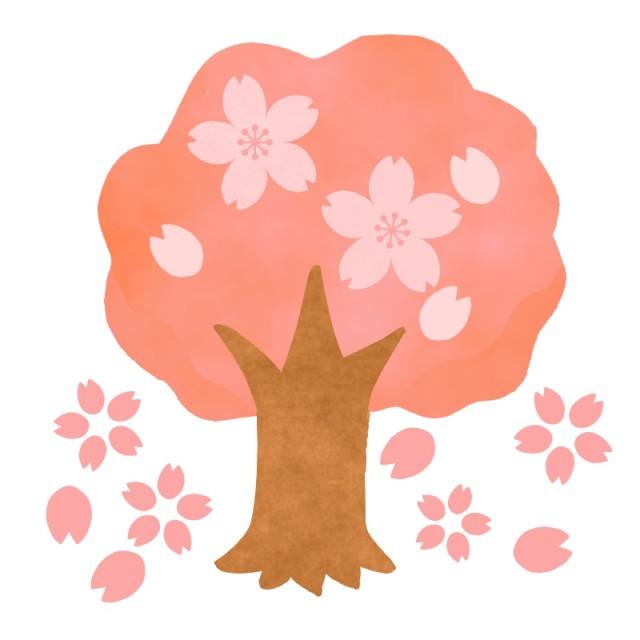 桜の木のイラスト 無料イラスト素材素材ラボ