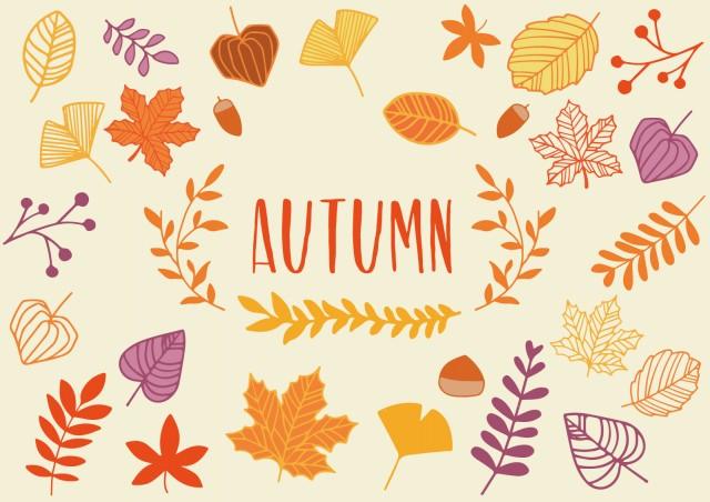 秋の植物イラストセット 無料イラスト素材素材ラボ