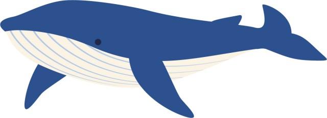 クジラのイラスト 無料イラスト素材素材ラボ