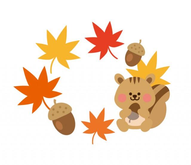リスとドングリと紅葉の秋フレーム 無料イラスト素材 素材ラボ