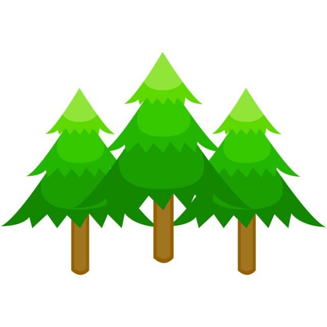 モミの木csaipngjpg 無料イラスト素材素材ラボ