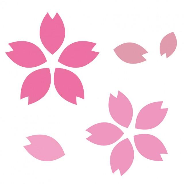 シンプル桜素材