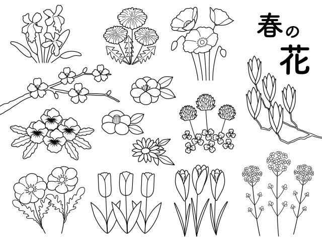 春の花 モノクロ 無料イラスト素材素材ラボ