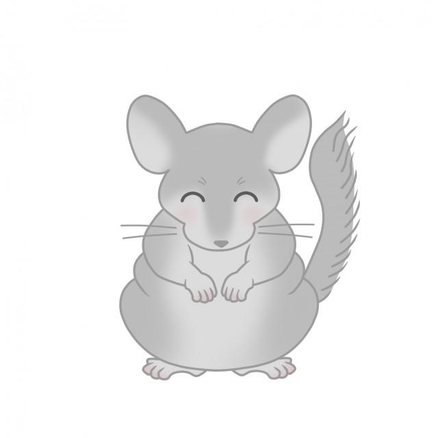 小動物のイラストチンチラ 無料イラスト素材素材ラボ