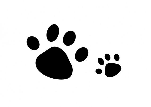 動物の足跡 | 無料イラスト素材|素材ラボ