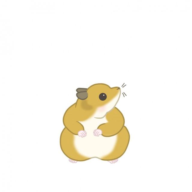小動物のイラストハムスター 無料イラスト素材素材ラボ