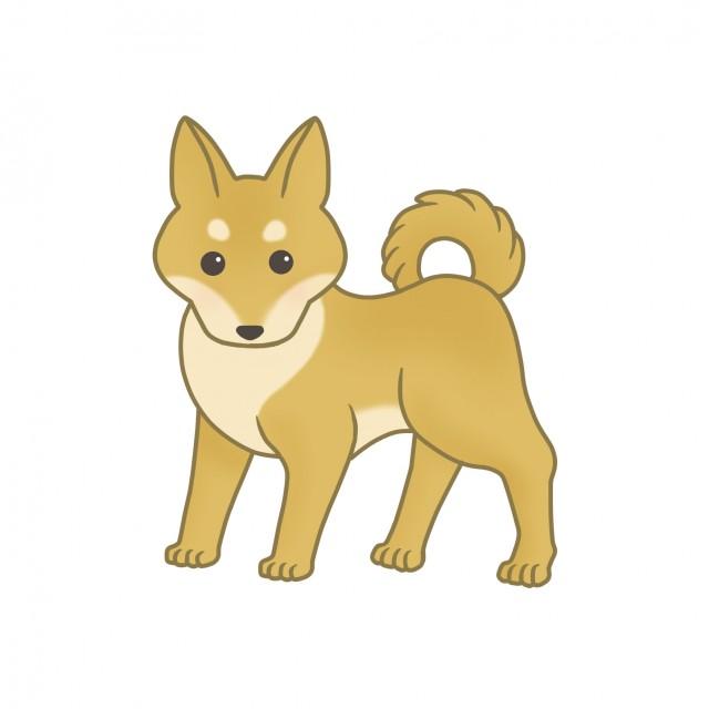 犬のイラスト柴犬 無料イラスト素材素材ラボ