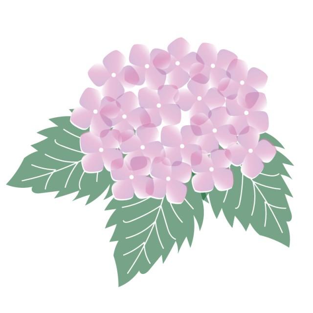 しっとり紫陽花のイラスト 無料イラスト素材素材ラボ
