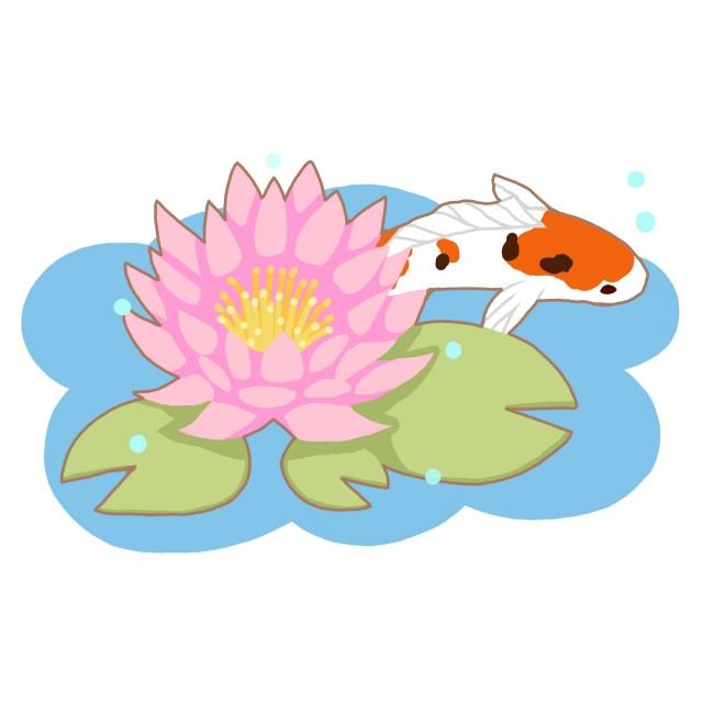 スイレンと泳ぐ鯉 無料イラスト素材素材ラボ