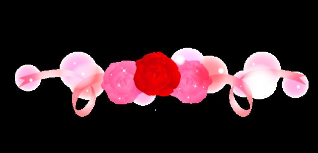 薔薇(バラ)とリ…