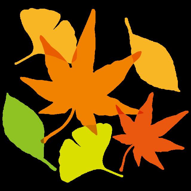 紅葉もみじイチョウモミジ落ち葉 無料イラスト素材素材ラボ