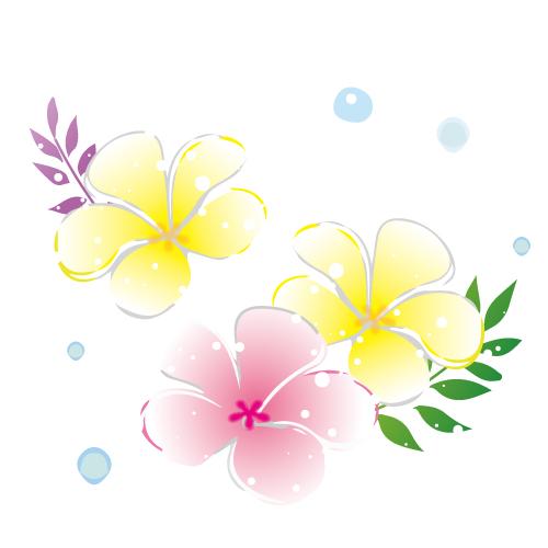 プルメリアの花イラスト 無料イラスト素材素材ラボ